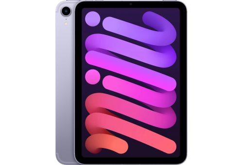Apple iPad mini Wi-Fi + Cellular 256GB - Purple (2021)