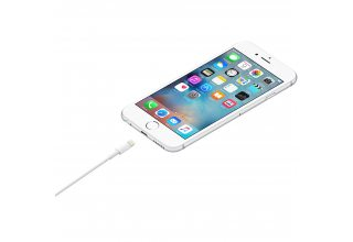 Lightning to USB Cable (1.0 m)
