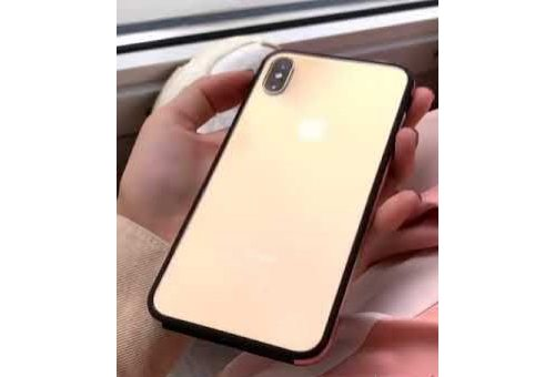 Чехол Uniq для iPhone XS Max Valencia Clear Blush Gold